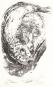 Hermann Glaser. Das Gespräch mit einer Forelle ist schon was wert. Bild 1
