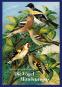 Die Vögel Mitteleuropas. Mit Fine-Art-Print. Bild 1