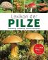 Lexikon der Pilze. Bestimmung, Verwendung, typische Doppelgänger. Bild 1