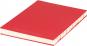 Mittelgroßes Skizzenbuch mit linierten Seiten, rot. Koptische Bindung. Bild 1