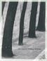 Otto Steinert. Pariser Formen. Bild 1
