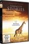Serengeti Stories DVD Bild 1