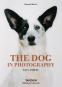 The Dog in Photography. 1839 - Today. Die besten Hundefotos. Bild 1
