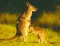 Australien - Land der Farben Bild 2