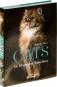 Cats. An Illustrated Miscellany. Eine illustrierte Auswahl wundervoller und berühmter Katzen. Bild 2