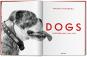 Walter Chandoha. Dogs. Photographs 1941-1991. Bild 2