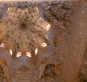 Die Alhambra. Geschichte. Architektur. Kunst. Cabra-Leder. Bild 2