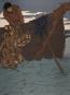 Die Nibelunge. Illustriert von Joseph Sattler. Reprint. Nach der Originalausgabe von 1898-1904. Bild 2