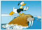 Donald Duck Band 1 Bild 2