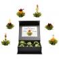 Erblüh-Tee-Blumen Grün. 6er-Set. Magnetbox mit Silberprägung. Bild 2