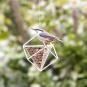 Erdnuss-Spender für Vögel, weiß. Bild 2