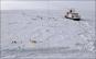 Expedition Arktis. Die größte Forschungsreise aller Zeiten. Bildband zum ARD-Film. Bild 2