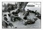 Howard Bingham's Black Panthers 1968. Bild 2
