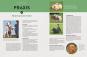 Hundeerziehung mit Spaß. Das beste Training - einfach, vielseitig, für Sie und Ihren Hund. Bild 2