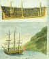 James Cook Abenteuer Südsee Bild 2