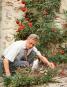Norah Lindsay. Leben und Werk einer Gartendesignerin. Bild 2