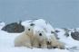 Polarwelten. AntArktis. Bild 2