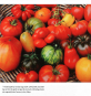 Reichtum ernten - Vielfalt im Gemüsebeet Bild 2