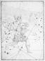 Uranometria von Johannes Bayer 1603. Bild 2