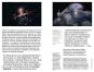 Welche Form hat der Weltraum? Große Fragen des 21. Jahrhunderts. Bild 2