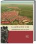 Zaberns Bildbände der Archäologie 2. 3 Bände. Bild 2