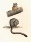 Alexander von Humboldt. Tierleben. Bild 3