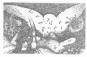Apuleius Amor und Psyche. Vorzugsausgabe mit 16 Originalradierungen von Harry Jürgens. Bild 3