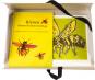 »Bienen kennen keinen Sonntag«. Beflügelnd-heitere Verse aus dem Reich der Insekten. Vorzugsausgabe mit signierter Grafik. Bild 3