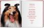 Walter Chandoha. Dogs. Photographs 1941-1991. Bild 3