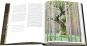 Das geheime Leben der Bäume. Was sie fühlen, wie sie kommunizieren. Der Bildband. Mit dem vollständigen Text der Originalausgabe. Bild 3