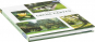 Faszination Grüne Gärten. Die schönsten Gestaltungsideen mit ausführlichen Pflanzenporträts. Bild 3