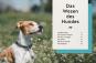 Hundeerziehung mit Spaß. Das beste Training - einfach, vielseitig, für Sie und Ihren Hund. Bild 3