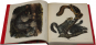 John J. Audubon. Die Säugetiere Nordamerikas. Bild 3