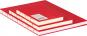 Kleines Skizzenbuch mit linierten Seiten, rot. Koptische Bindung. Bild 3