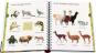 Mein großes Bildwörterbuch Tiere. Meyers kleine Kinderbibliothek. Bild 3