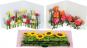 Pop-up-Grußkarten-Set »Die Blumenfelder«. Bild 3