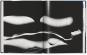 Ralph Gibson. Nude. Bild 3