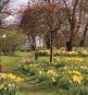 Sissinghurst. Der schönste Garten Englands. Bild 3