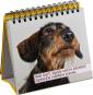 Uli Stein. Für echte Hundefreunde. Bild 3