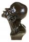 Bronzebüste Franz Xaver Messerschmidt »Der Schnabelkopf«. Bild 4