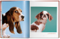 Walter Chandoha. Dogs. Photographs 1941-1991. Bild 4