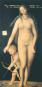 Die Malerei der deutschen Renaissance Bild 4