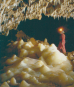 Höhlen. Verborgene Welten. Bild 4