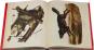 John J. Audubon. Die Säugetiere Nordamerikas. Bild 4