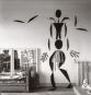 Matisse. Cut-outs. Bild 4