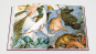 Nordalpine Meister im Detail, Set. Dürer, van Eyck, Bruegel, Vermeer. 4 Bände. Bild 4