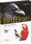 Bird Brain. Vögel mit Köpfchen. Die Erforschung gefiederter Intelligenz. Bild 5