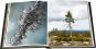 Das geheime Leben der Bäume. Was sie fühlen, wie sie kommunizieren. Der Bildband. Mit dem vollständigen Text der Originalausgabe. Bild 5