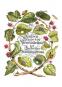 Maria Sibylla Merian. Der Raupen wundersame Verwandelung und sonderbare Blumennahrung. 2 Bände. Bild 5