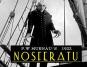 Nosferatu - Eine Symphonie des Grauens. DVD. Bild 5
